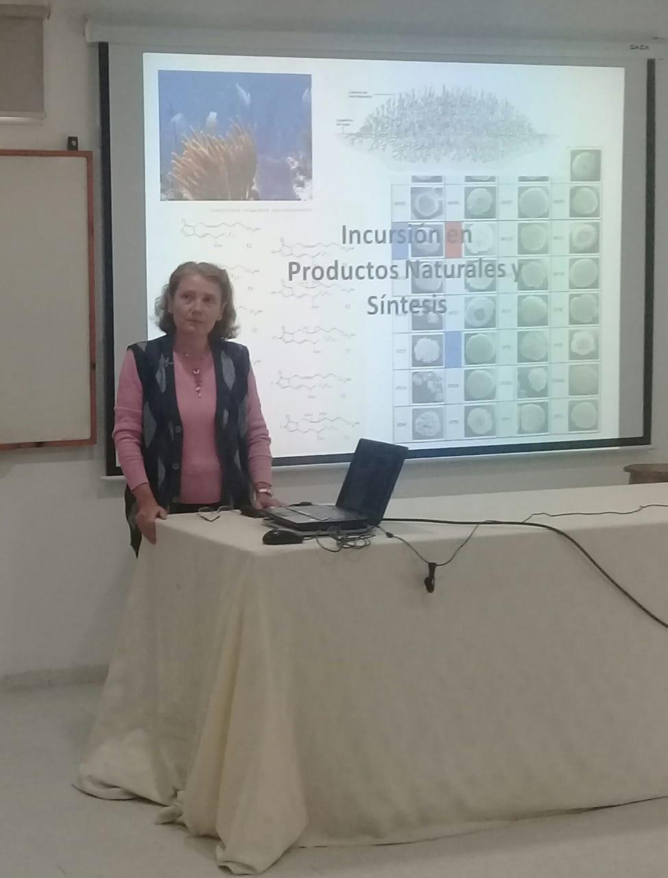 la Prof. Taddei impartiendo la charla